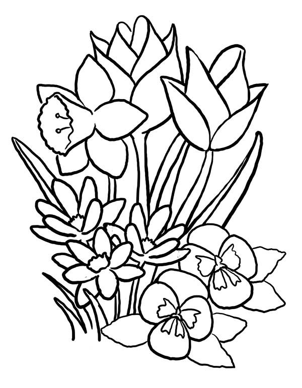 spring flower bouquet coloring page