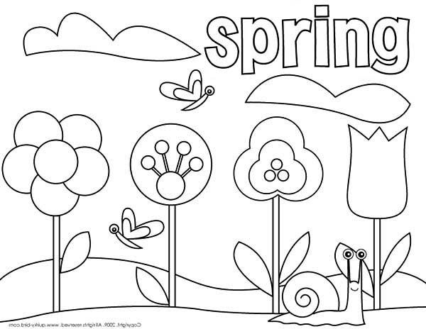 Spring, : Spring Flower Coloring Page