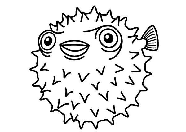Puffer Fish, : White Spotted Puffer Fish Coloring Page