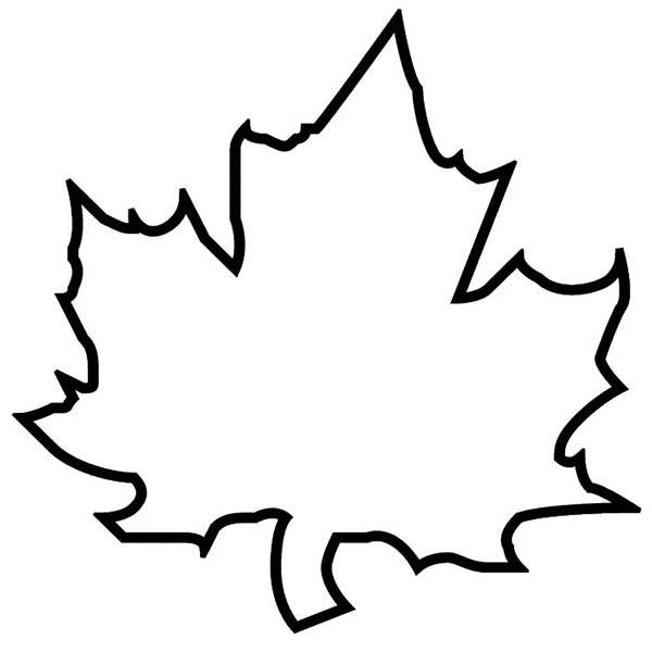 Autumn, : Maple Autumn Leaf Outline Coloring Page