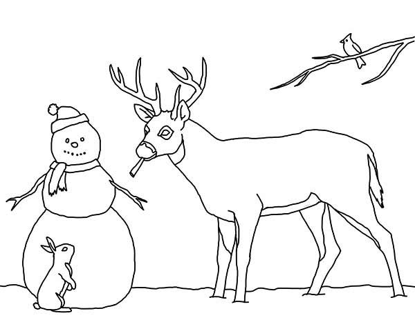 Christmas, : Mr Snowman on Christmas and His Animal Friends Coloring Page