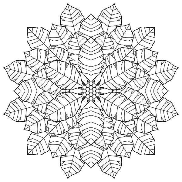 National Poinsettia Day, : Geometric Poinsettia Drawing for National Poinsettia Day Coloring Page