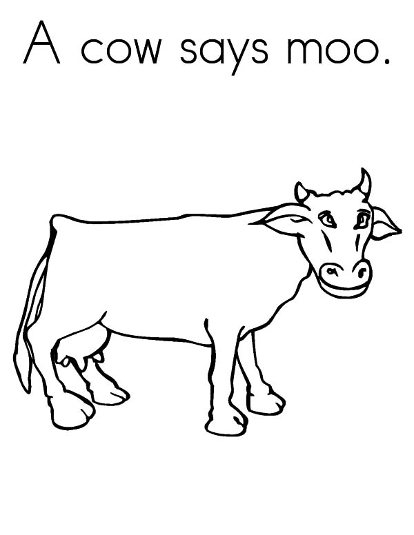 Cows, : A Cows Says Moo Coloring Pages
