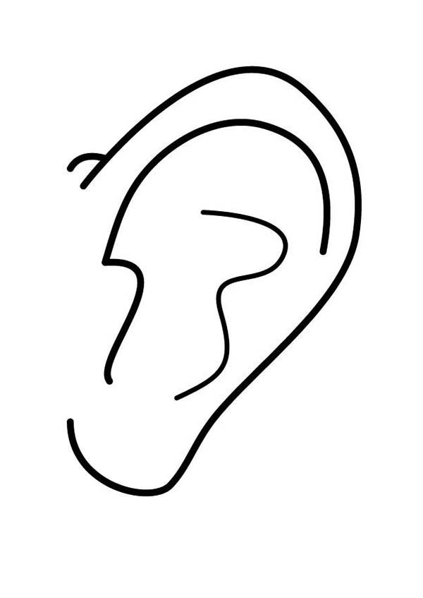 Ear, : A Very Clean Ear Coloring Pages