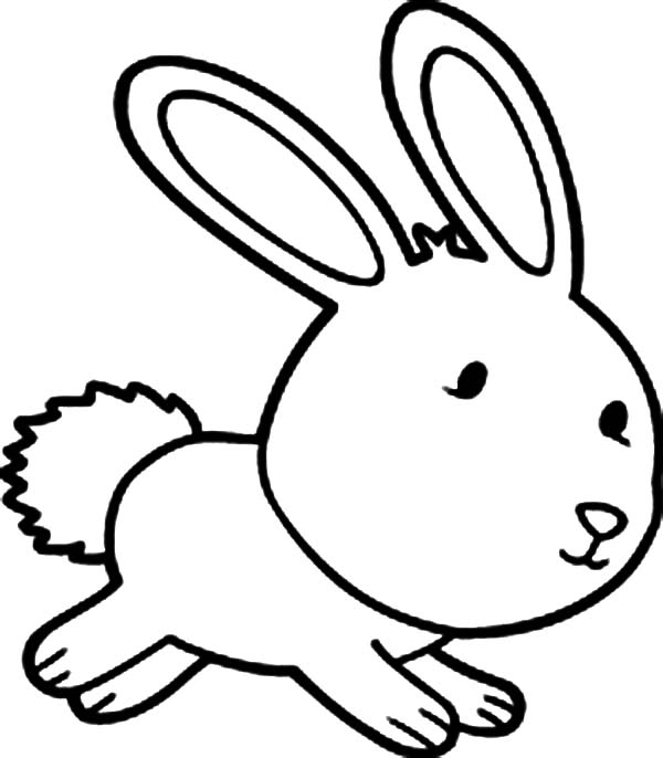 Hopping Bunny, : Chibi Hopping Bunny Coloring Pages