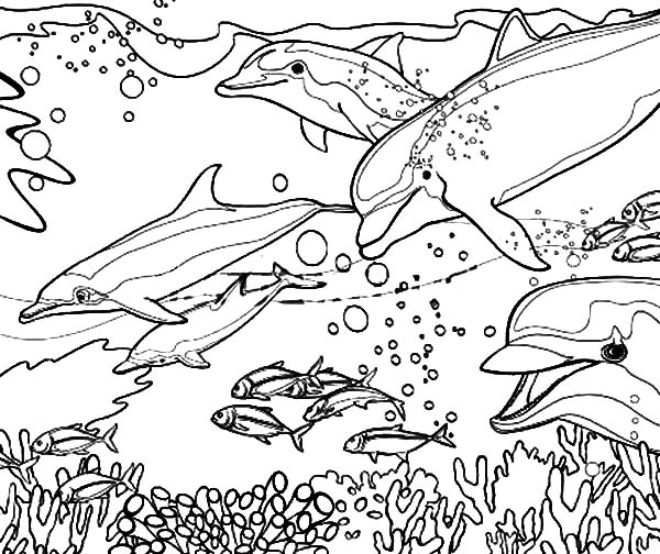 Coral Coloring Pages To Print Further Worksheet Japanese Further ...