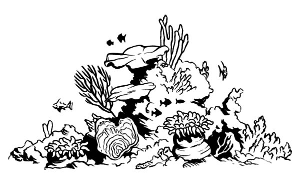 coral reef fish tank coloring pages