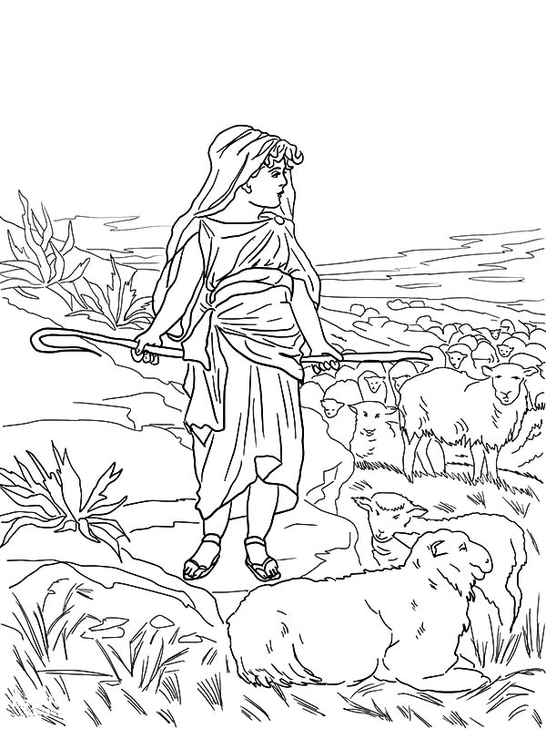 David The Shepherd Boy, : David the Shepherd Boy Watch His Sheeps Coloring Pages