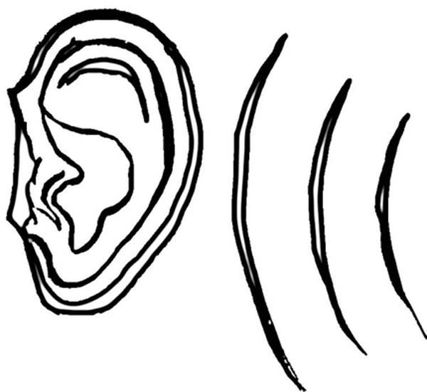 Ear, : Ear Hear Wave of Sound Coloring Pages