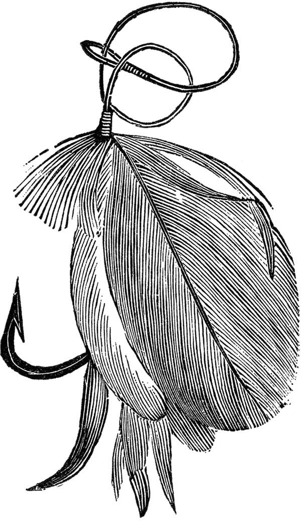 Fishing Lures, : Feather Fishing Lures Coloring Pages