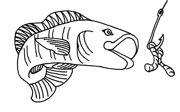 Fishing Lures, : Fish Eat Fishing Lure Coloring Pages