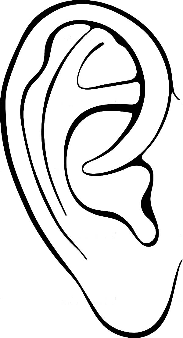 Ear, : Preschool Kid Learning Ear Coloring Pages