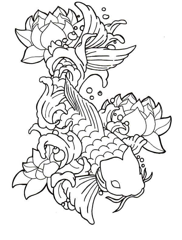 Coy Fish, : Symbol of Prosperity Coy Fish Coloring Pages