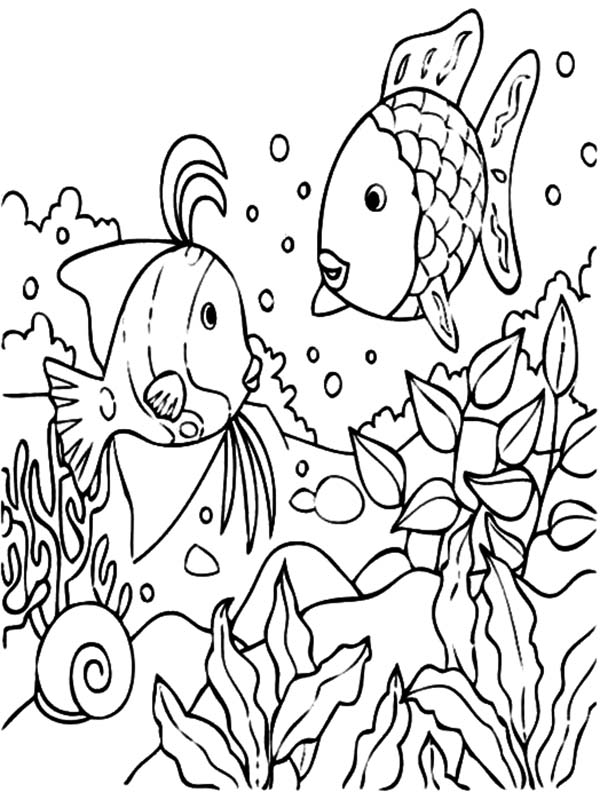 tropical fish coral reef coloring pages