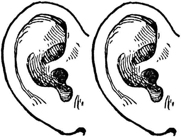 Ear, : Two Ear Coloring Pages